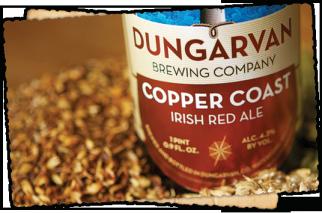 Birre Irlandesi: Dungarvan Brewing Company