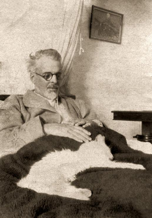 Gatti d'Irlanda: Yeats and cat