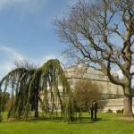 ItalishMagazine - dublino parchi - botanic gardens