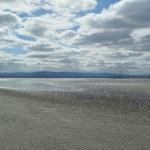 ItalishMagazine - dublino parchi - north bull island UNESCO biosphere