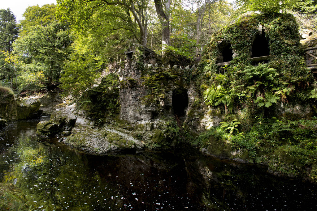 Game of Thrones - Tollymore Forest Park