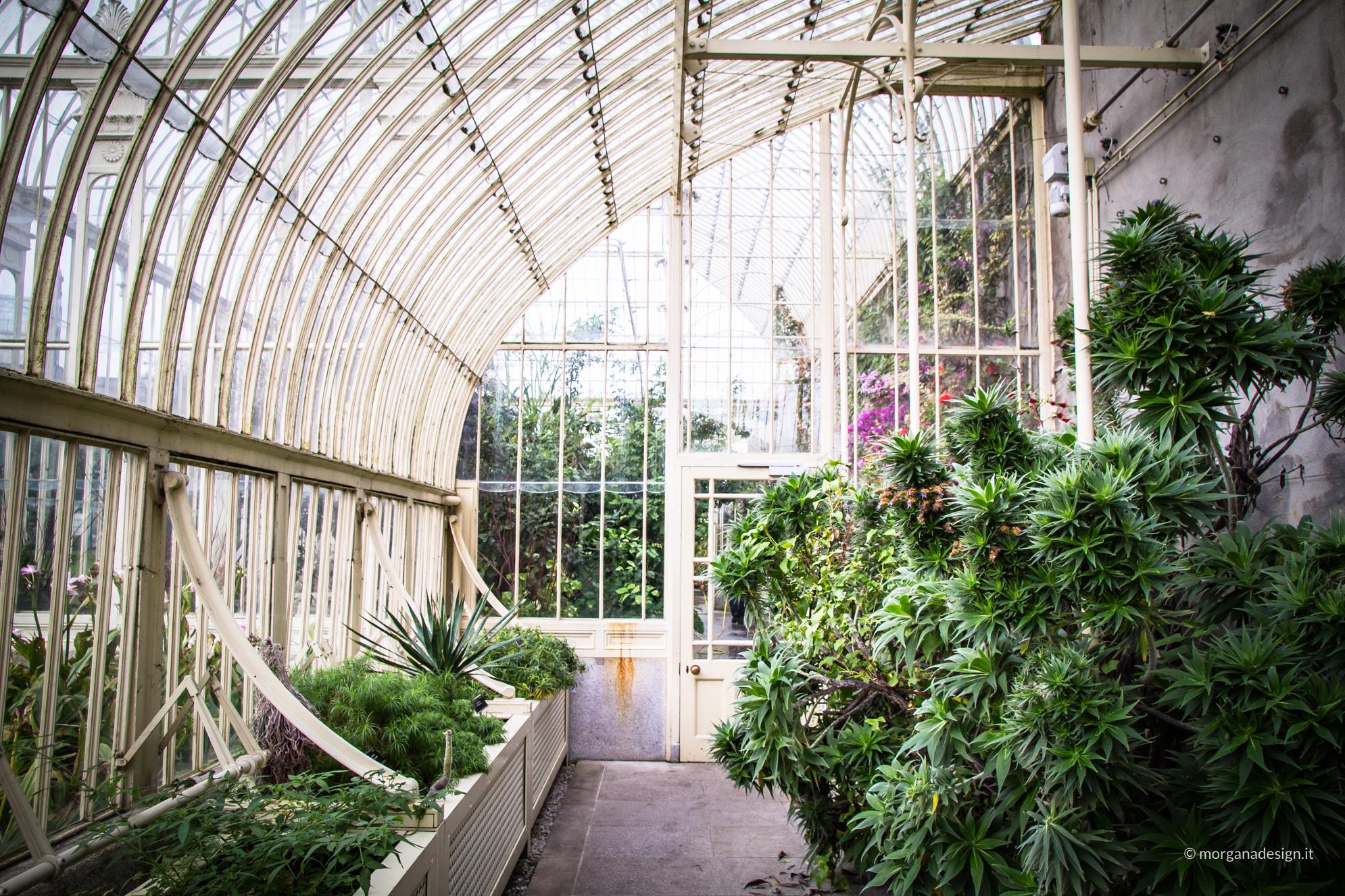 prima volta a dublino - morganadesign - Botanic Garden
