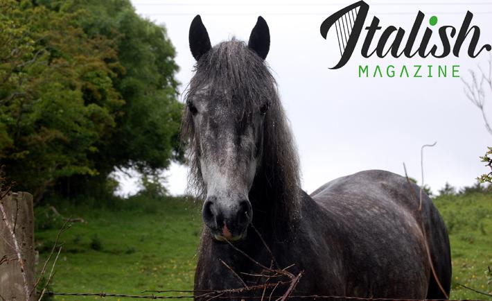ItalishMagazine - destinazioni irlandesi