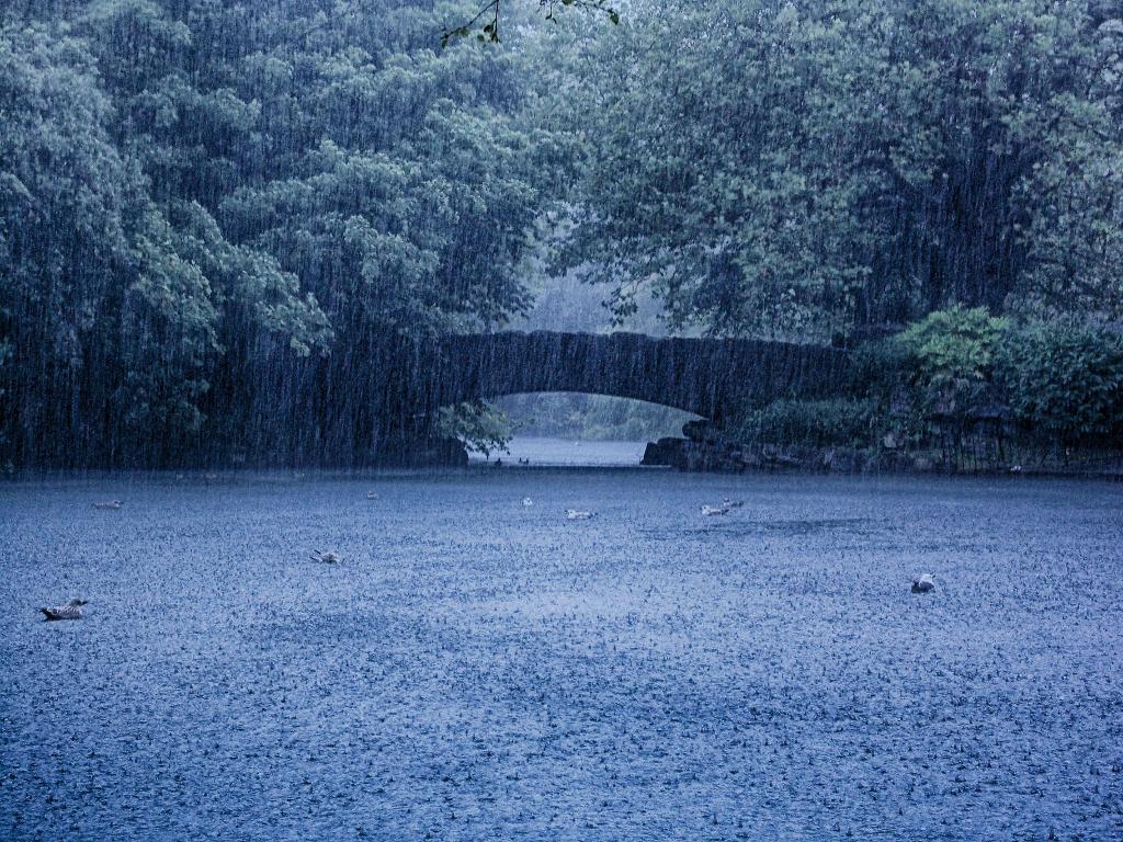 fotografare dublino   st stephen's green sotto la pioggia