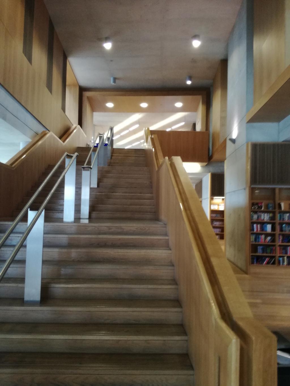 dlr lexicon - biblioteca dun laoghaire - dublino sud - italishmagazine