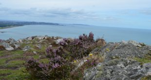 bray head - 003 - italishmagazine