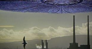 Porcospini mutanti dallo spazio profondo. A Dublino | Un racconto di (?) fantascienza di Max O'Rover