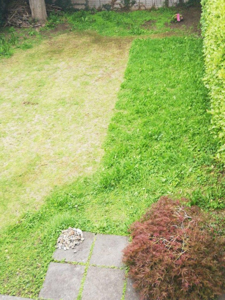 garden diary - cuinne an ghiorria - italishmagazine